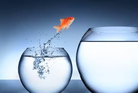 studio psicologia e counseling milano test: cambiamento